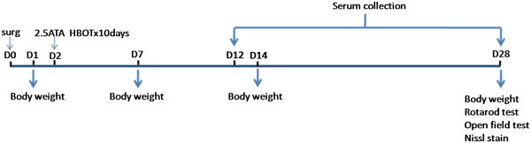 https://static-content.springer.com/image/art%3A10.1186%2F2045-9912-3-8/MediaObjects/13618_2013_Article_68_Fig1_HTML.jpg