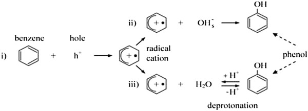 https://static-content.springer.com/image/art%3A10.1186%2F2052-336X-12-45/MediaObjects/40201_2013_Article_5072_Fig9_HTML.jpg