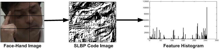 https://static-content.springer.com/image/art%3A10.1186%2F2192-1962-2-14/MediaObjects/13673_2011_Article_22_Fig7_HTML.jpg