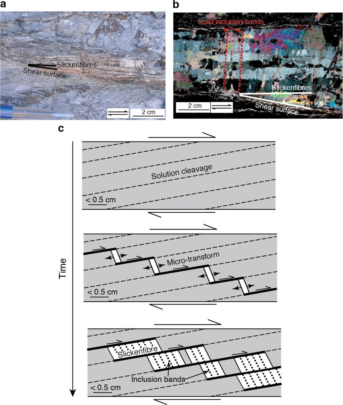 https://static-content.springer.com/image/art%3A10.1186%2F2197-4284-1-7/MediaObjects/40645_2013_Article_7_Fig16_HTML.jpg