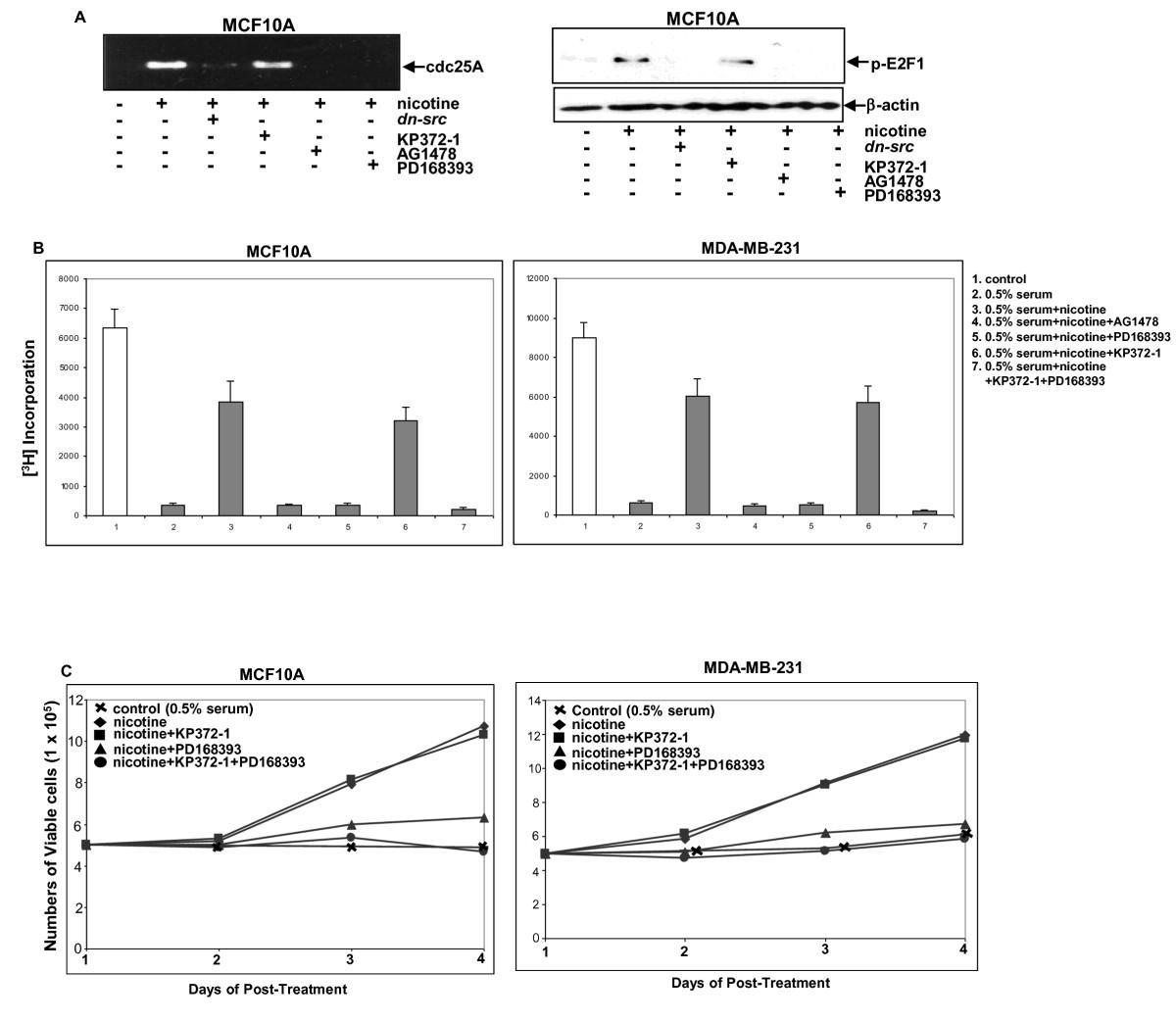 https://static-content.springer.com/image/art%3A10.1186%2Fbcr3055/MediaObjects/13058_2011_Article_2856_Fig5_HTML.jpg