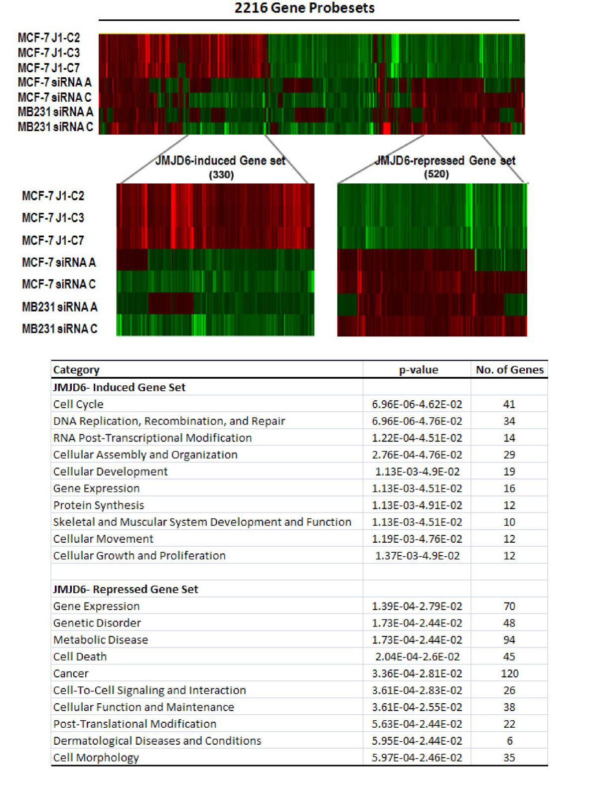 https://static-content.springer.com/image/art%3A10.1186%2Fbcr3200/MediaObjects/13058_2011_Article_3001_Fig6_HTML.jpg