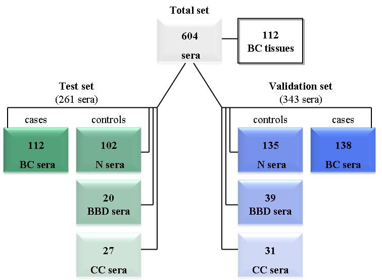 https://static-content.springer.com/image/art%3A10.1186%2Fbcr3375/MediaObjects/13058_2012_Article_3183_Fig1_HTML.jpg