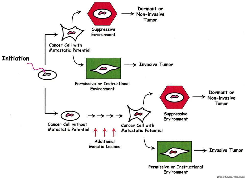 ikea microenvironment