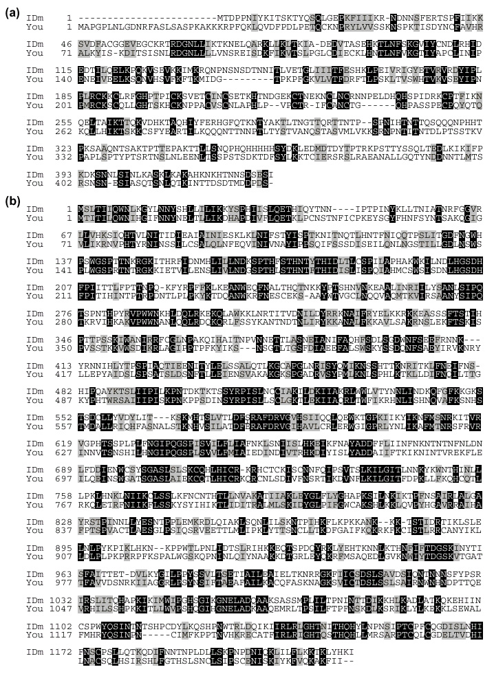 https://static-content.springer.com/image/art%3A10.1186%2Fgb-2000-1-6-research0012/MediaObjects/13059_2000_Article_66_Fig7_HTML.jpg