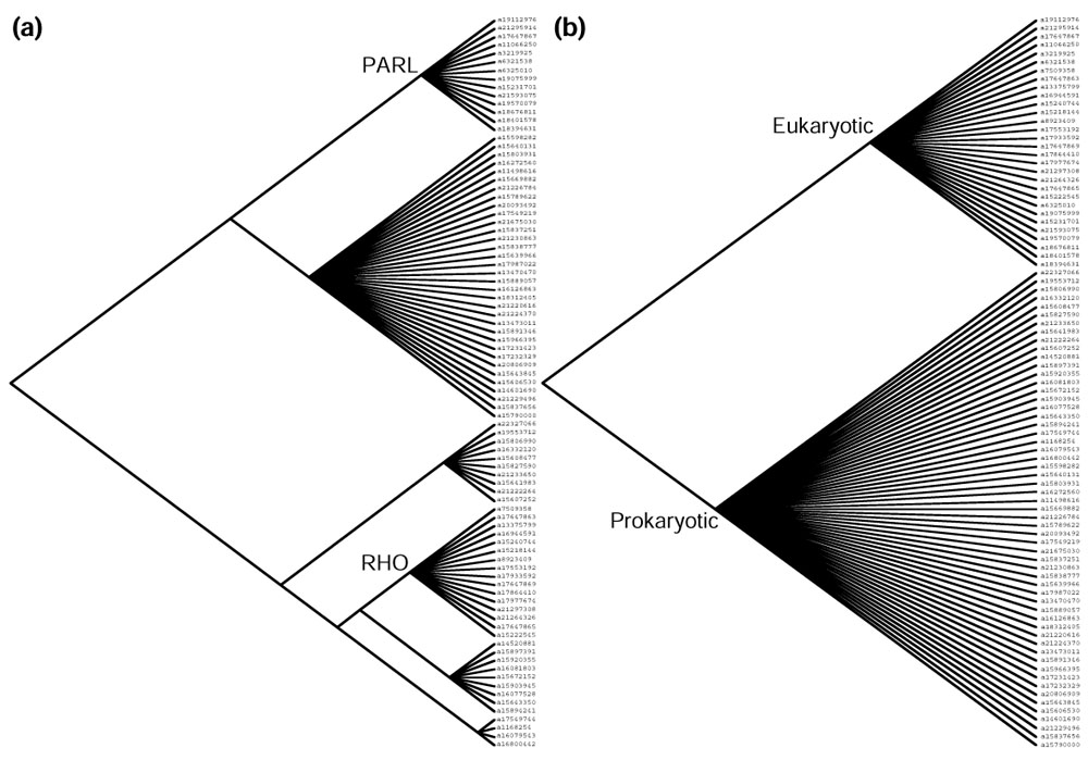 https://static-content.springer.com/image/art%3A10.1186%2Fgb-2003-4-3-r19/MediaObjects/13059_2002_Article_529_Fig3_HTML.jpg