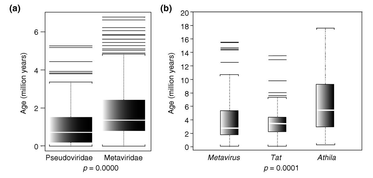 https://static-content.springer.com/image/art%3A10.1186%2Fgb-2004-5-10-r78/MediaObjects/13059_2004_Article_882_Fig5_HTML.jpg