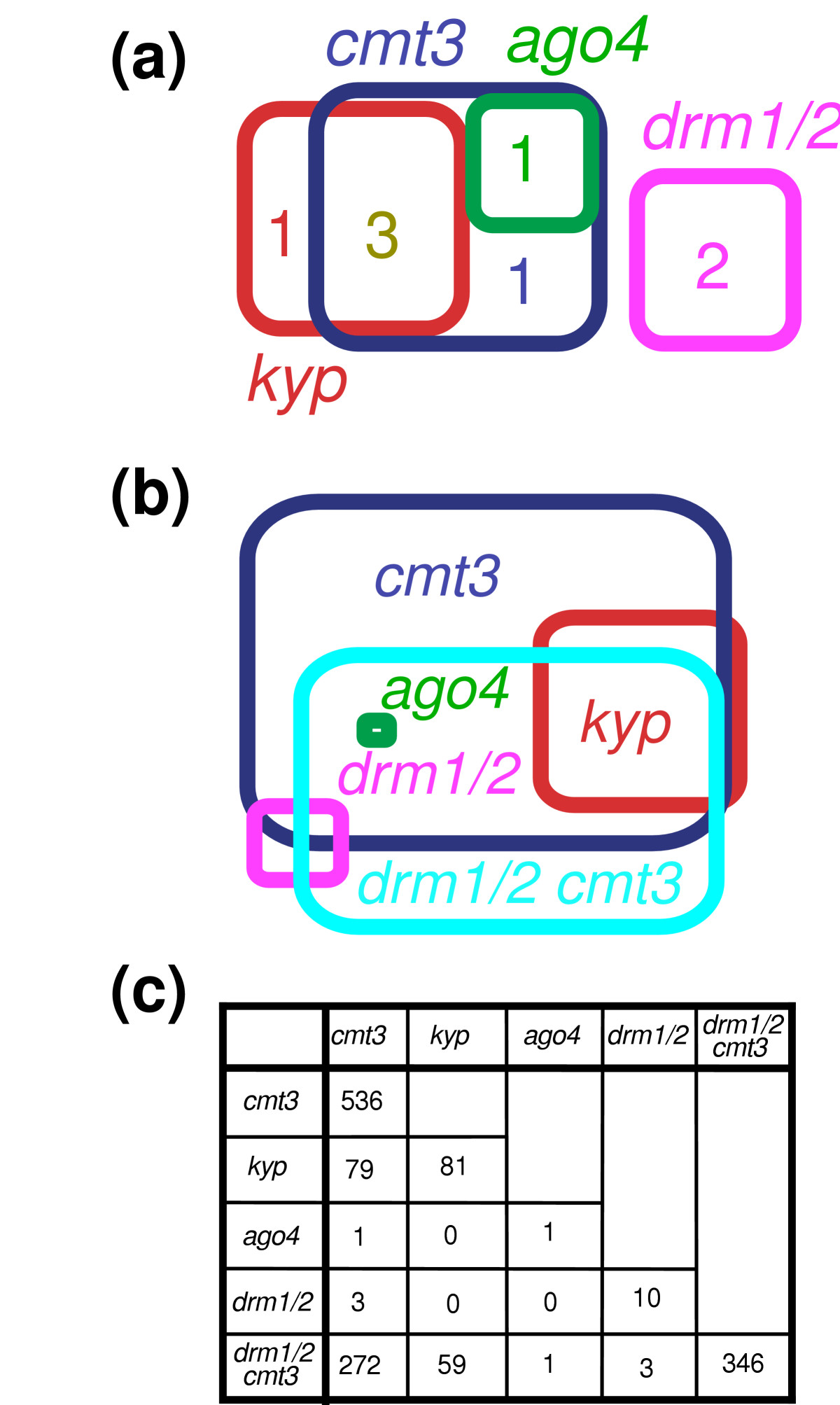 https://static-content.springer.com/image/art%3A10.1186%2Fgb-2005-6-11-r90/MediaObjects/13059_2005_Article_1125_Fig2_HTML.jpg