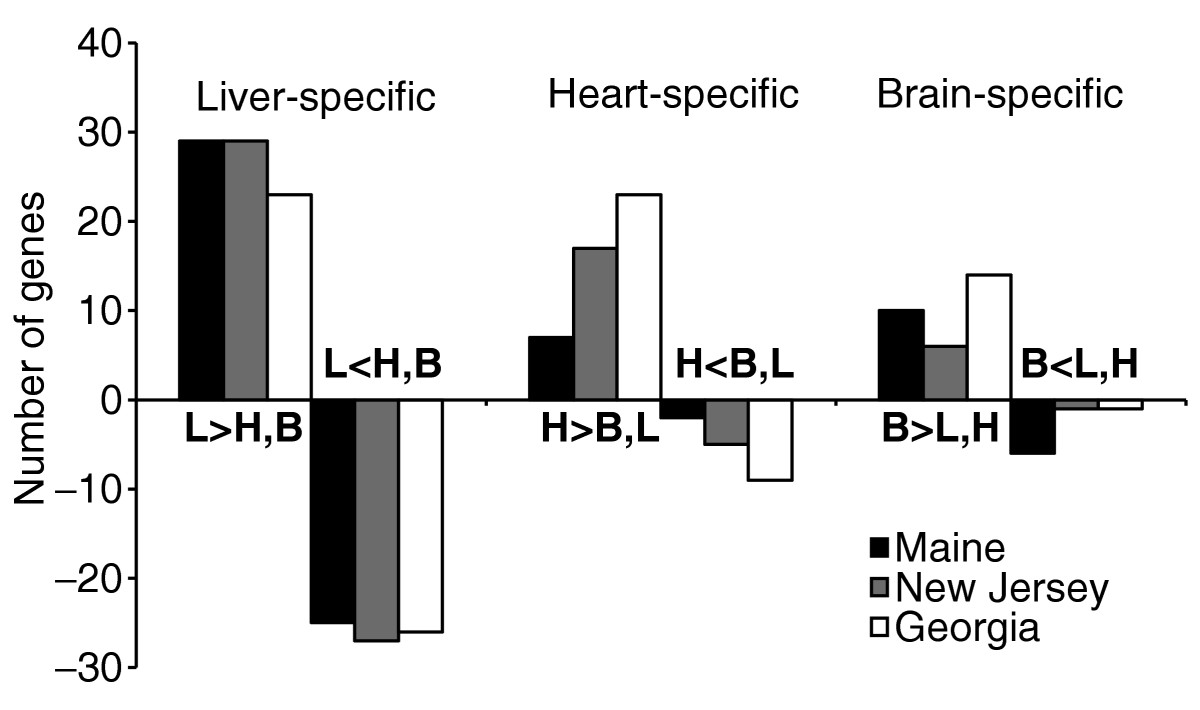 https://static-content.springer.com/image/art%3A10.1186%2Fgb-2005-6-2-r13/MediaObjects/13059_2004_Article_1048_Fig4_HTML.jpg