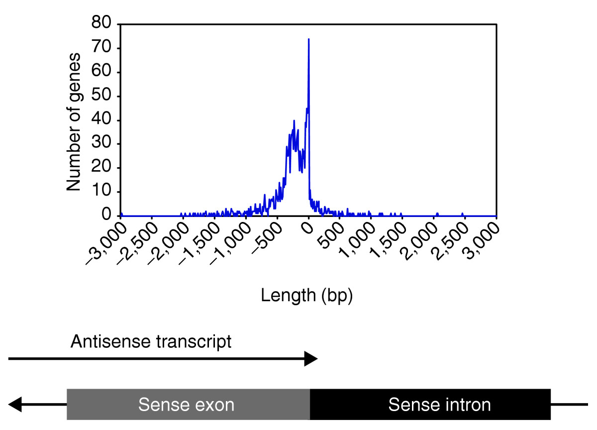 https://static-content.springer.com/image/art%3A10.1186%2Fgb-2005-6-6-r51/MediaObjects/13059_2004_Article_1086_Fig3_HTML.jpg