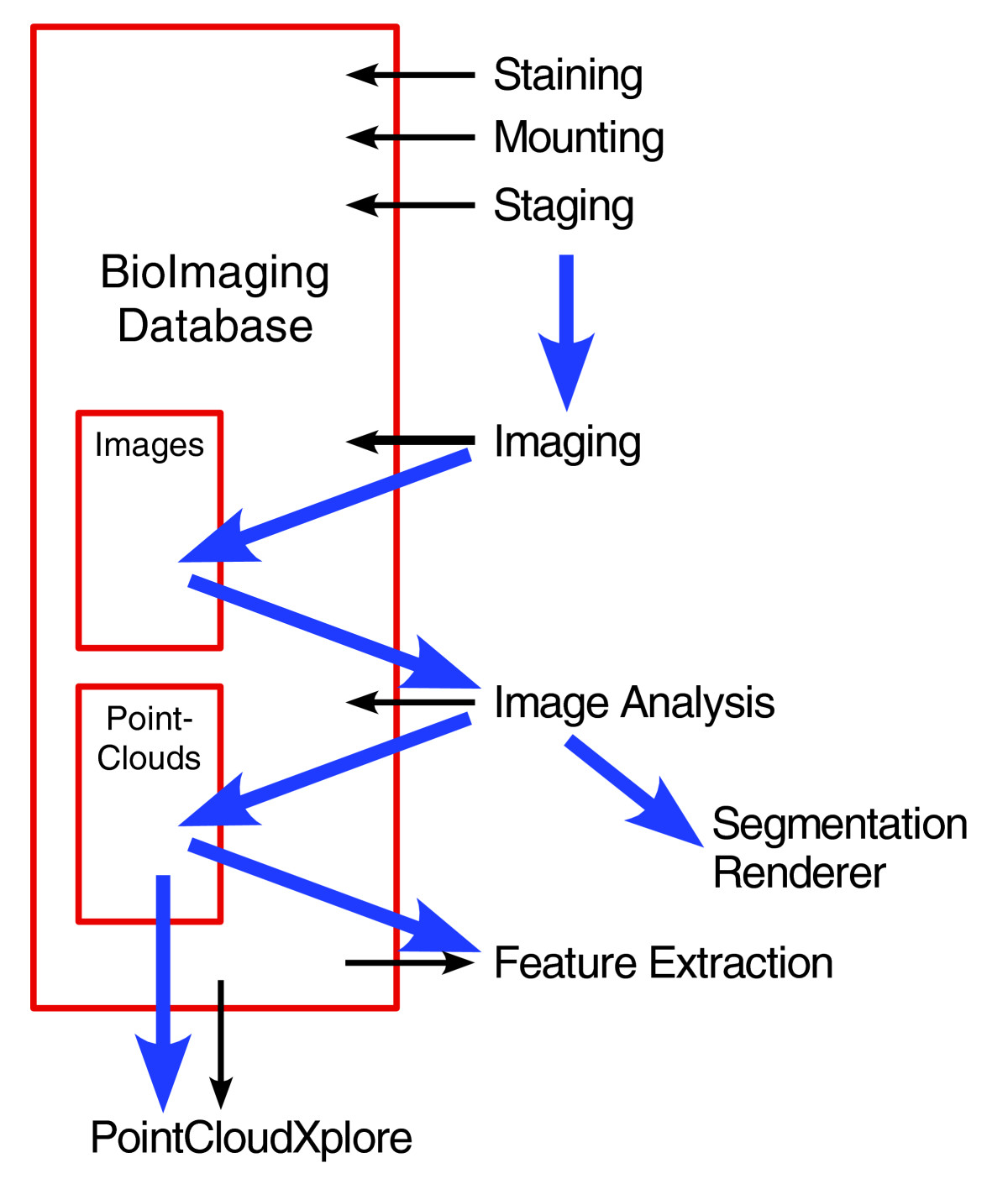 https://static-content.springer.com/image/art%3A10.1186%2Fgb-2006-7-12-r123/MediaObjects/13059_2006_Article_1391_Fig1_HTML.jpg