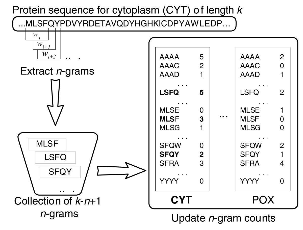 https://static-content.springer.com/image/art%3A10.1186%2Fgb-2007-8-5-r68/MediaObjects/13059_2006_Article_1550_Fig4_HTML.jpg