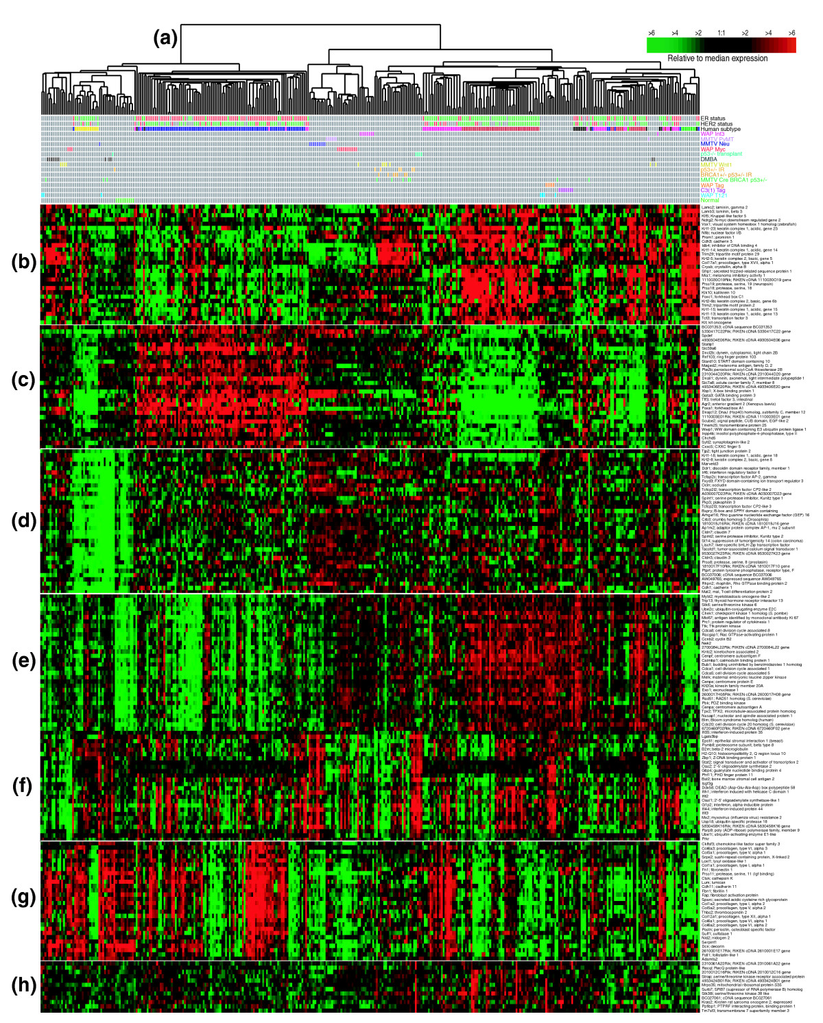 https://static-content.springer.com/image/art%3A10.1186%2Fgb-2007-8-5-r76/MediaObjects/13059_2006_Article_1558_Fig3_HTML.jpg