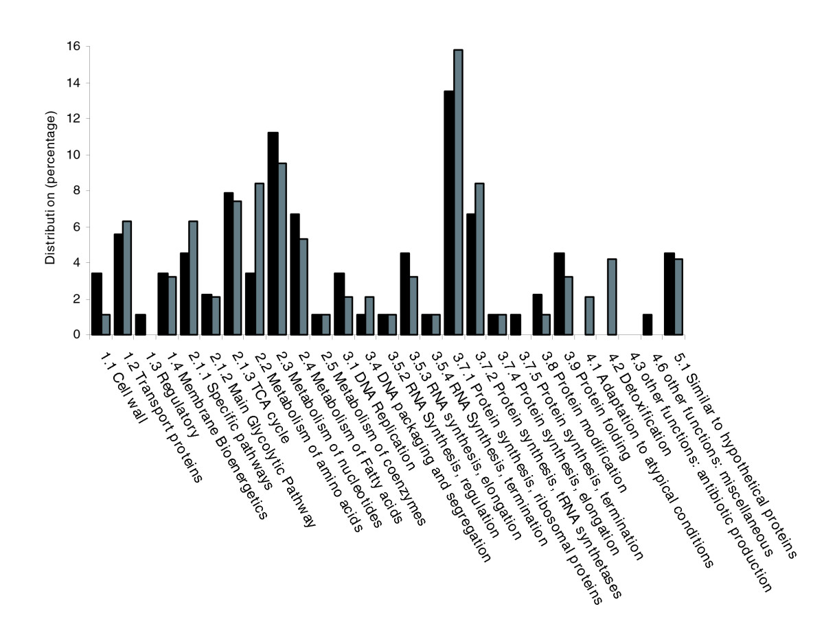 https://static-content.springer.com/image/art%3A10.1186%2Fgb-2007-8-6-r110/MediaObjects/13059_2007_Article_1592_Fig2_HTML.jpg