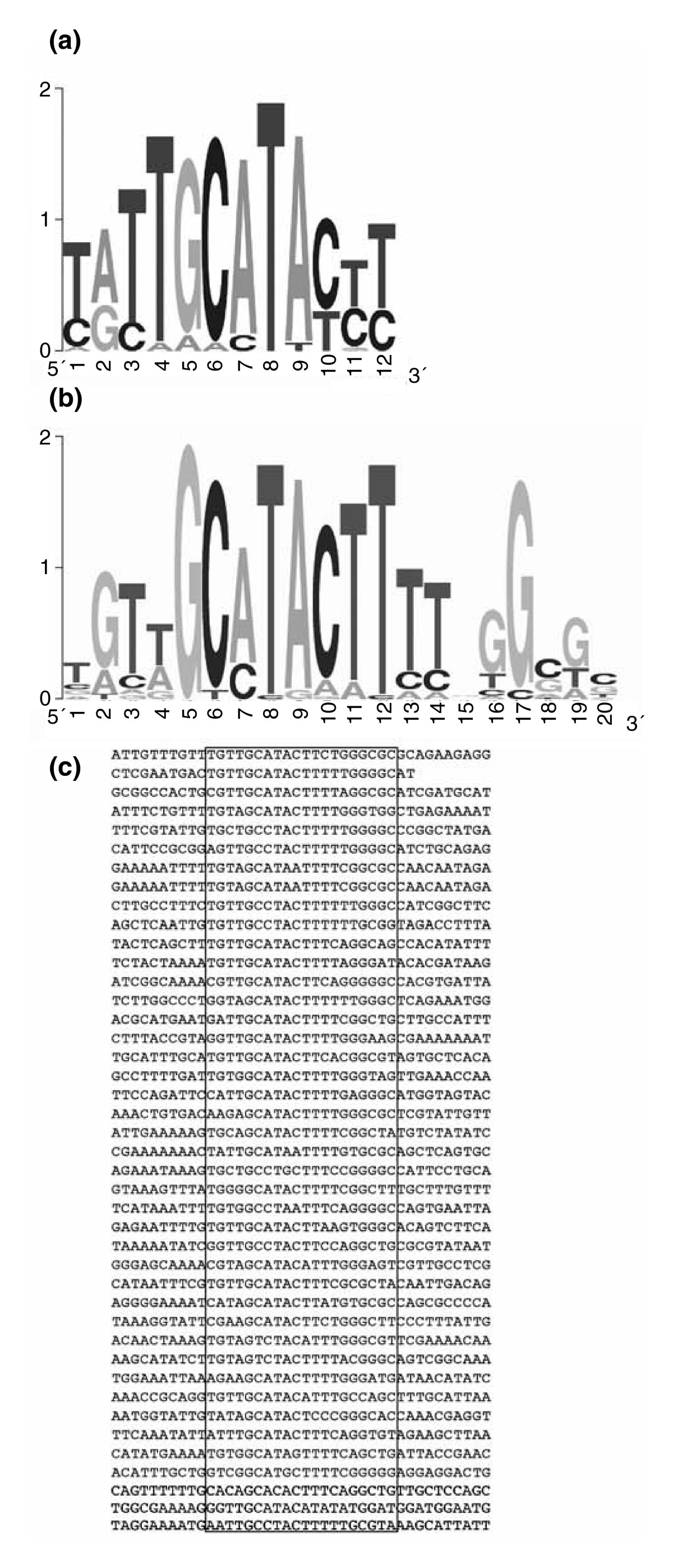 https://static-content.springer.com/image/art%3A10.1186%2Fgb-2007-8-8-r167/MediaObjects/13059_2007_Article_1648_Fig3_HTML.jpg
