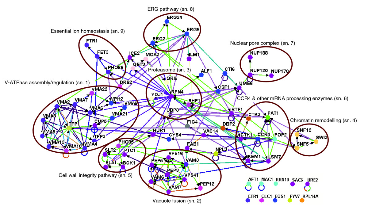https://static-content.springer.com/image/art%3A10.1186%2Fgb-2008-9-4-r67/MediaObjects/13059_2007_Article_1929_Fig2_HTML.jpg
