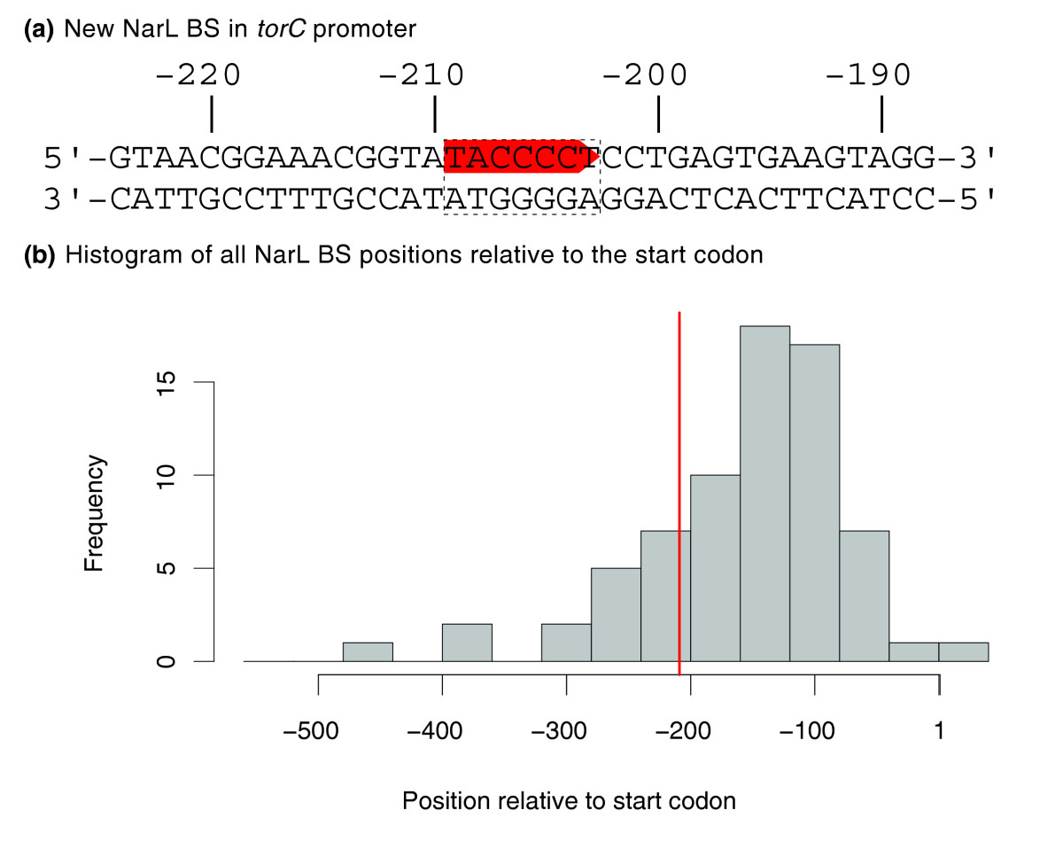 https://static-content.springer.com/image/art%3A10.1186%2Fgb-2009-10-5-r46/MediaObjects/13059_2009_Article_2196_Fig2_HTML.jpg
