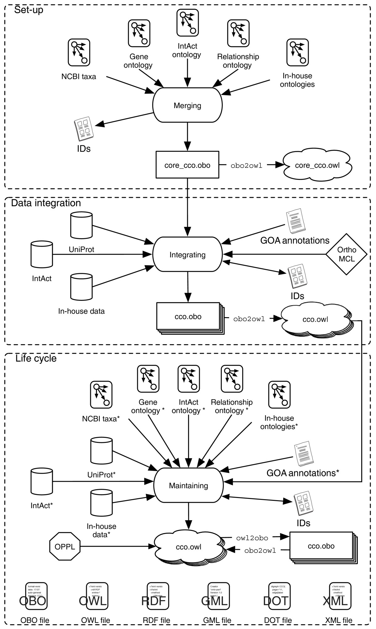 https://static-content.springer.com/image/art%3A10.1186%2Fgb-2009-10-5-r58/MediaObjects/13059_2008_Article_2208_Fig6_HTML.jpg