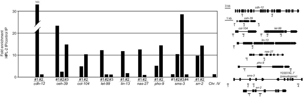 https://static-content.springer.com/image/art%3A10.1186%2Fgb-2011-12-12-r123/MediaObjects/13059_2011_Article_2745_Fig2_HTML.jpg