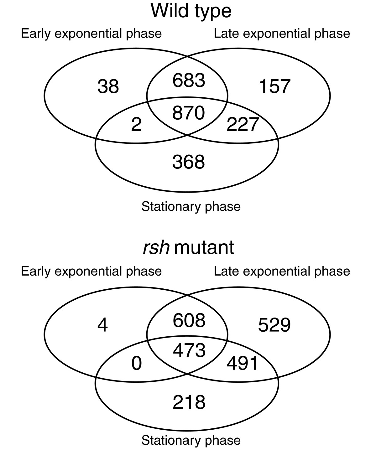 https://static-content.springer.com/image/art%3A10.1186%2Fgb-2011-12-2-r17/MediaObjects/13059_2010_Article_2487_Fig1_HTML.jpg