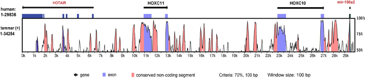 https://static-content.springer.com/image/art%3A10.1186%2Fgb-2011-12-8-r81/MediaObjects/13059_2011_Article_2659_Fig7_HTML.jpg