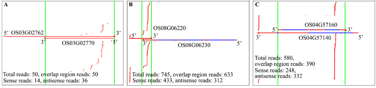 https://static-content.springer.com/image/art%3A10.1186%2Fgb-2012-13-3-r20/MediaObjects/13059_2012_Article_2855_Fig2_HTML.jpg