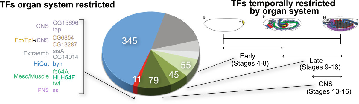 https://static-content.springer.com/image/art%3A10.1186%2Fgb-2013-14-12-r140/MediaObjects/13059_2013_Article_3201_Fig6_HTML.jpg