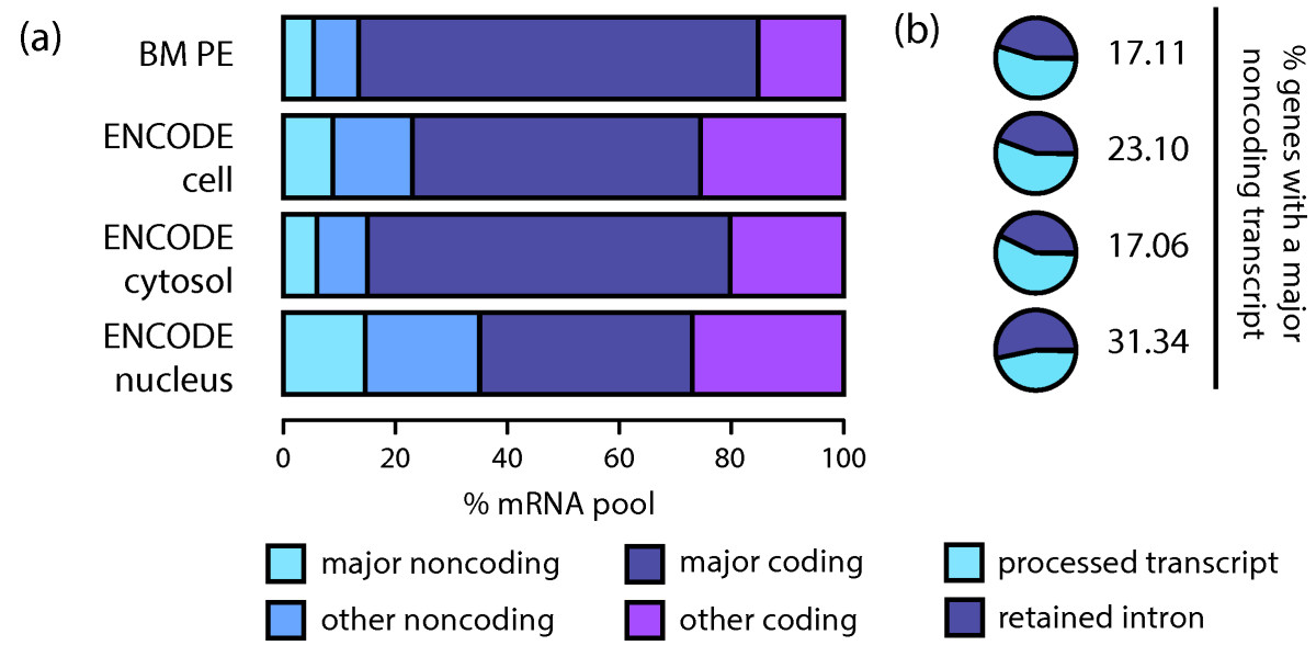 https://static-content.springer.com/image/art%3A10.1186%2Fgb-2013-14-7-r70/MediaObjects/13059_2013_Article_3140_Fig5_HTML.jpg