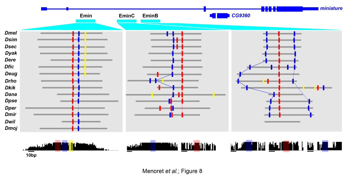 https://static-content.springer.com/image/art%3A10.1186%2Fgb-2013-14-8-r86/MediaObjects/13059_2013_Article_3148_Fig8_HTML.jpg