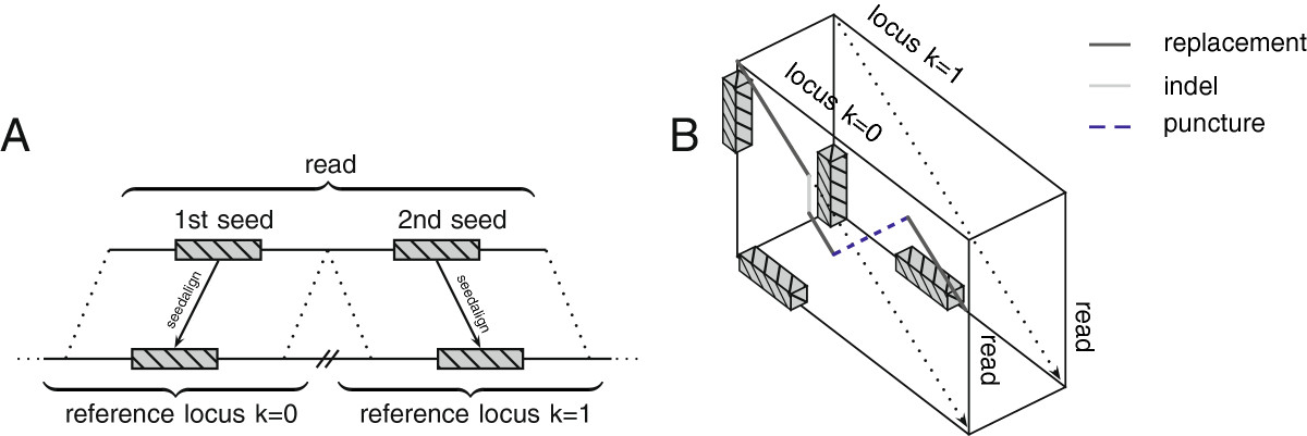 https://static-content.springer.com/image/art%3A10.1186%2Fgb-2014-15-2-r34/MediaObjects/13059_2013_Article_3233_Fig5_HTML.jpg
