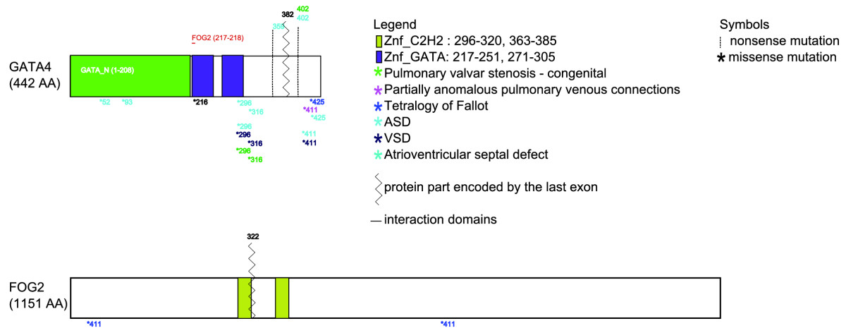 https://static-content.springer.com/image/art%3A10.1186%2Fgm137/MediaObjects/13073_2009_Article_137_Fig2_HTML.jpg