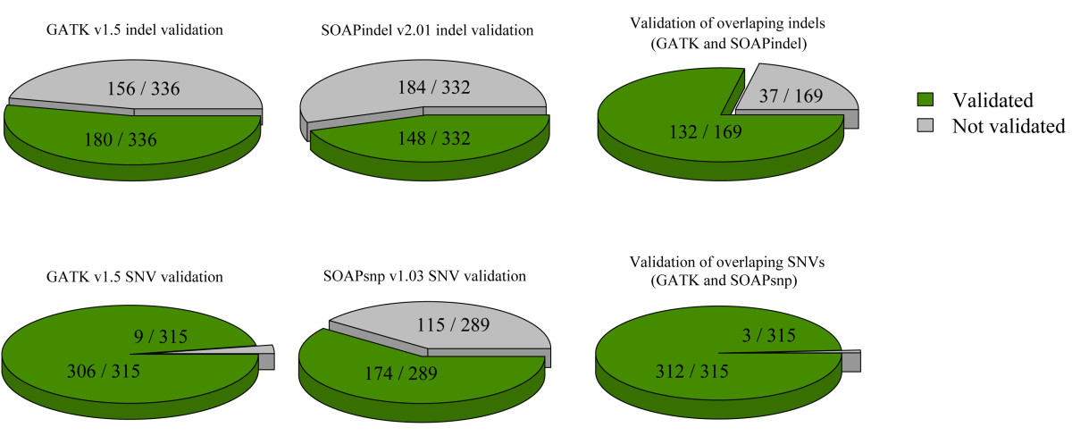 https://static-content.springer.com/image/art%3A10.1186%2Fgm432/MediaObjects/13073_2012_Article_426_Fig5_HTML.jpg