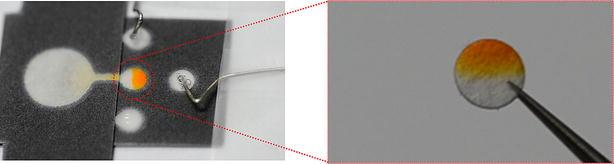 https://static-content.springer.com/image/art%3A10.1186%2Fs40486-017-0045-y/MediaObjects/40486_2017_45_Fig6_HTML.jpg