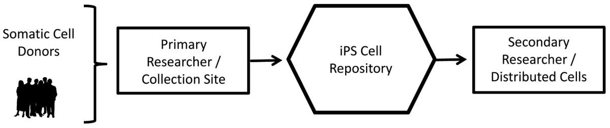 https://static-content.springer.com/image/art%3A10.1186%2Fscrt154/MediaObjects/13287_2013_Article_147_Fig1_HTML.jpg